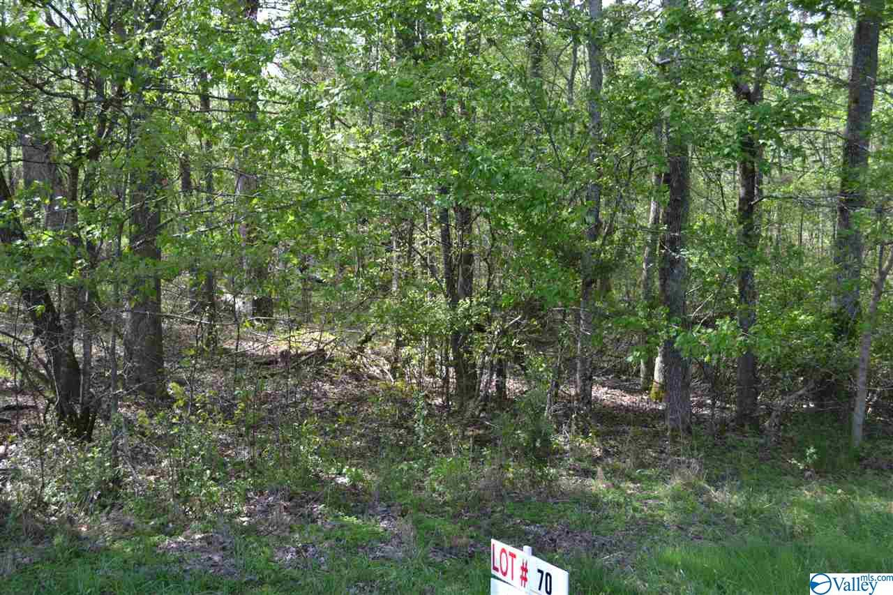 Photo of home for sale at Lot 70 Sonoma Drive, Fayetteville TN