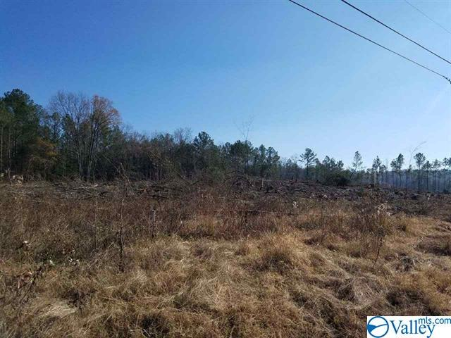 Photo of home for sale at 23 Gunnells Road, Jacksonville AL