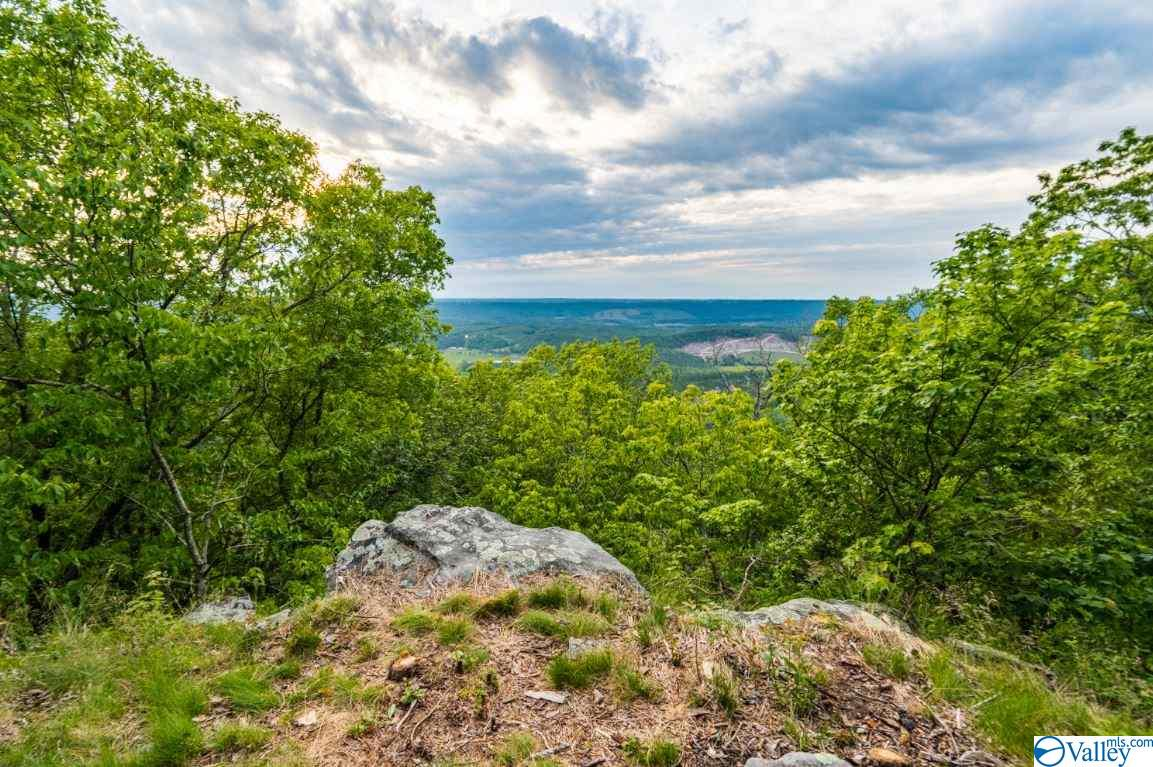 Photo of home for sale at 0000 County Road 89, Mentone AL