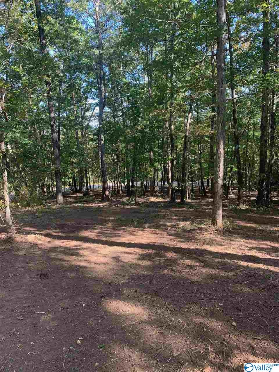 Photo of home for sale at Lot 27 Bear Creek Trail, Fort Payne AL