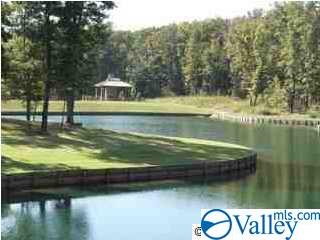 Photo of home for sale at 7 Winter Walk Way, Huntsville AL