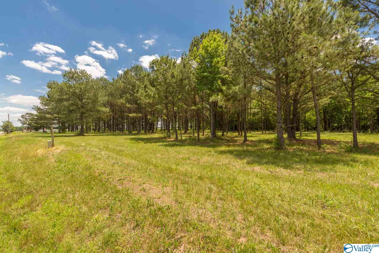 Photo of home for sale at 13627 Pulaski Pike, Ardmore AL