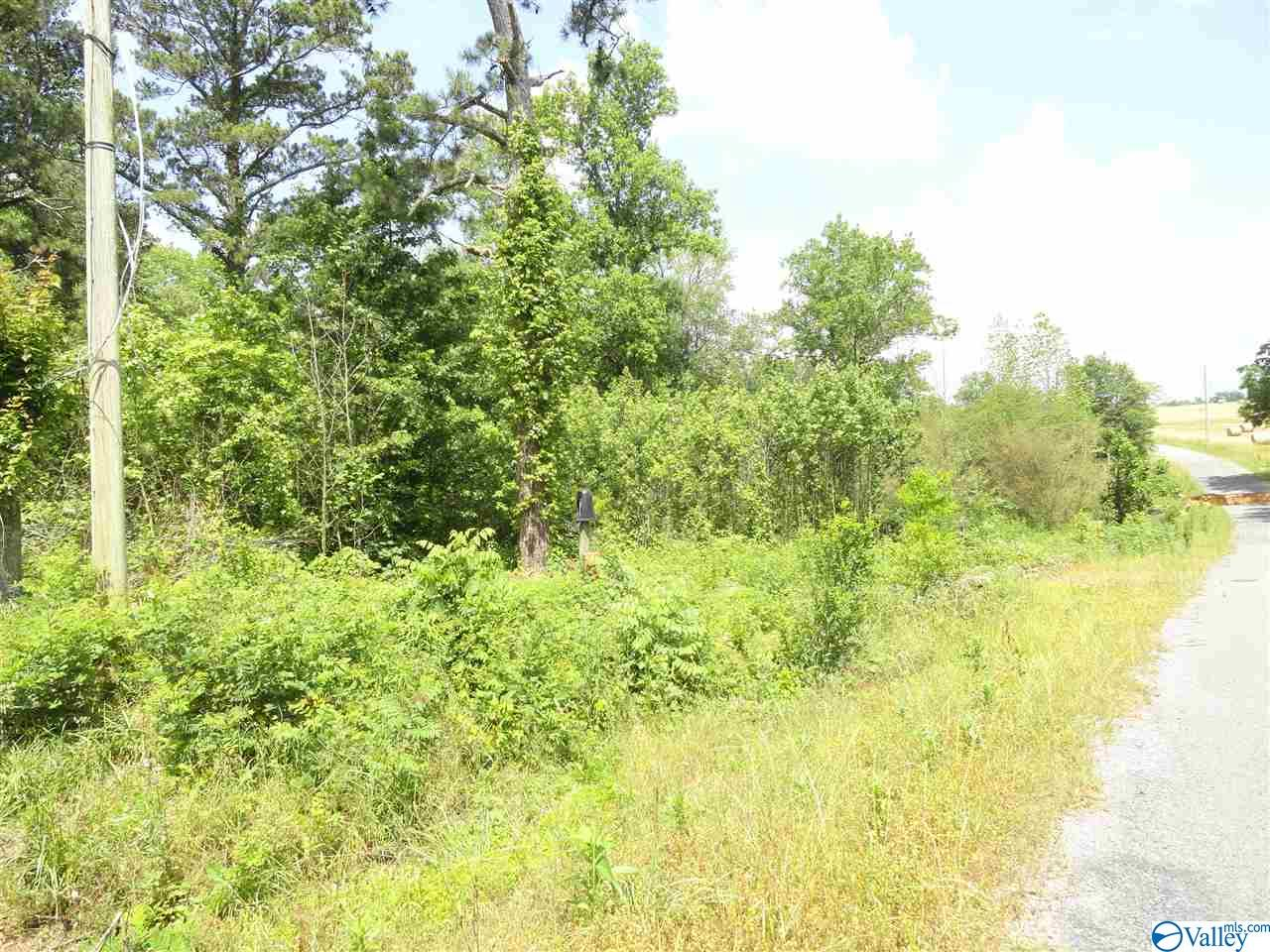 Photo of home for sale at 860 County Road 360, Albertville AL
