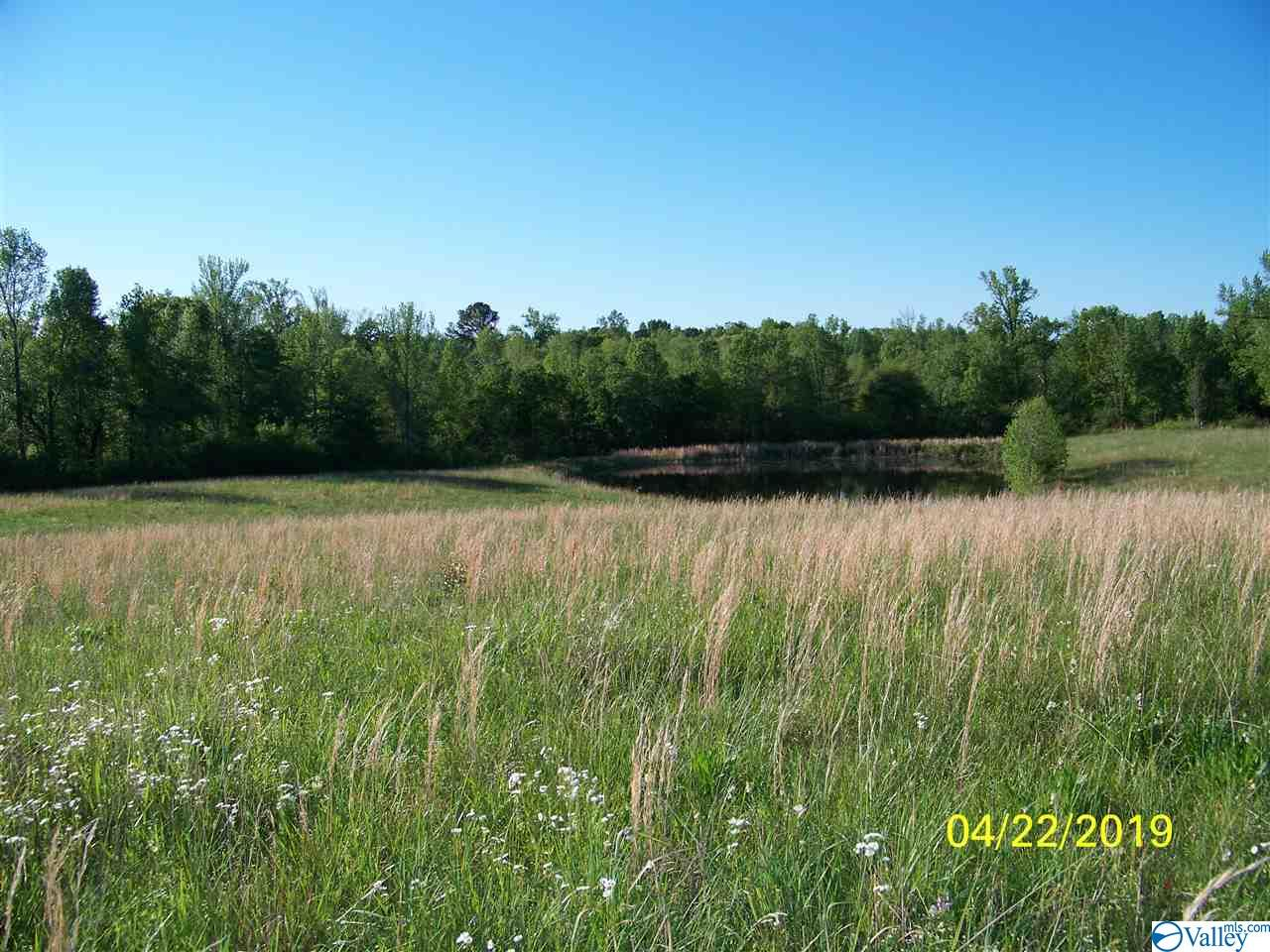 Photo of home for sale at 00 Brashiers Chapel Road, Arab AL