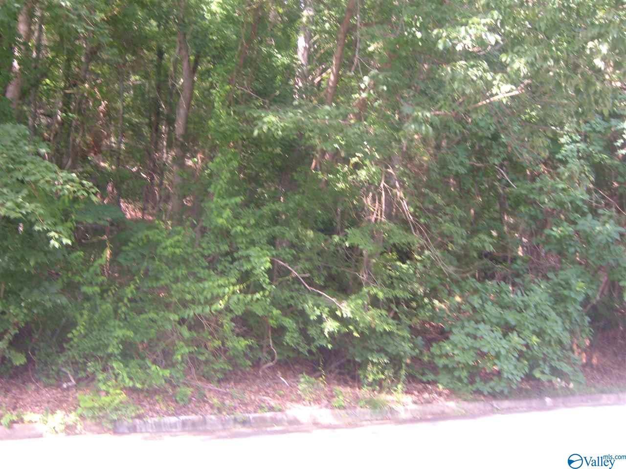 Photo of home for sale at 0 Chandler Road, Huntsville AL