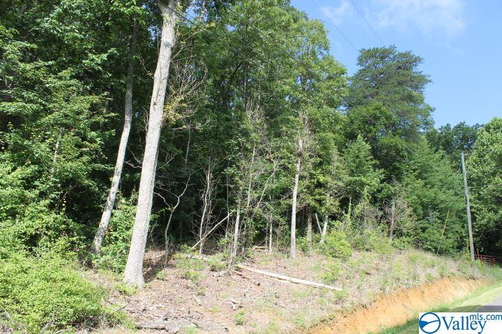 Photo of home for sale at 24th Street, Fort Payne AL