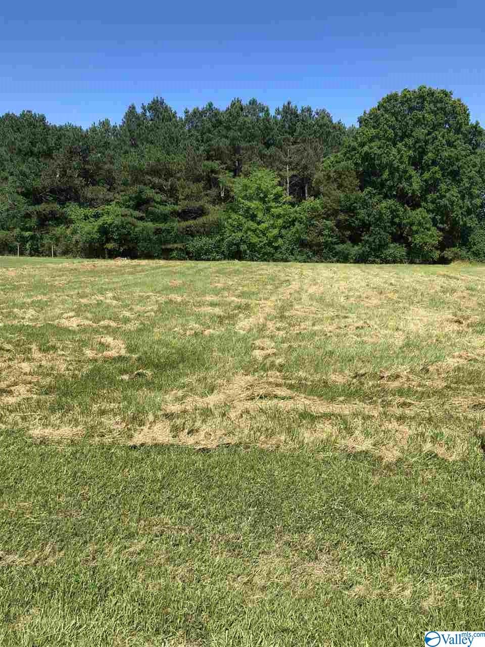 Photo of home for sale at 0 County Road 82, Moulton AL