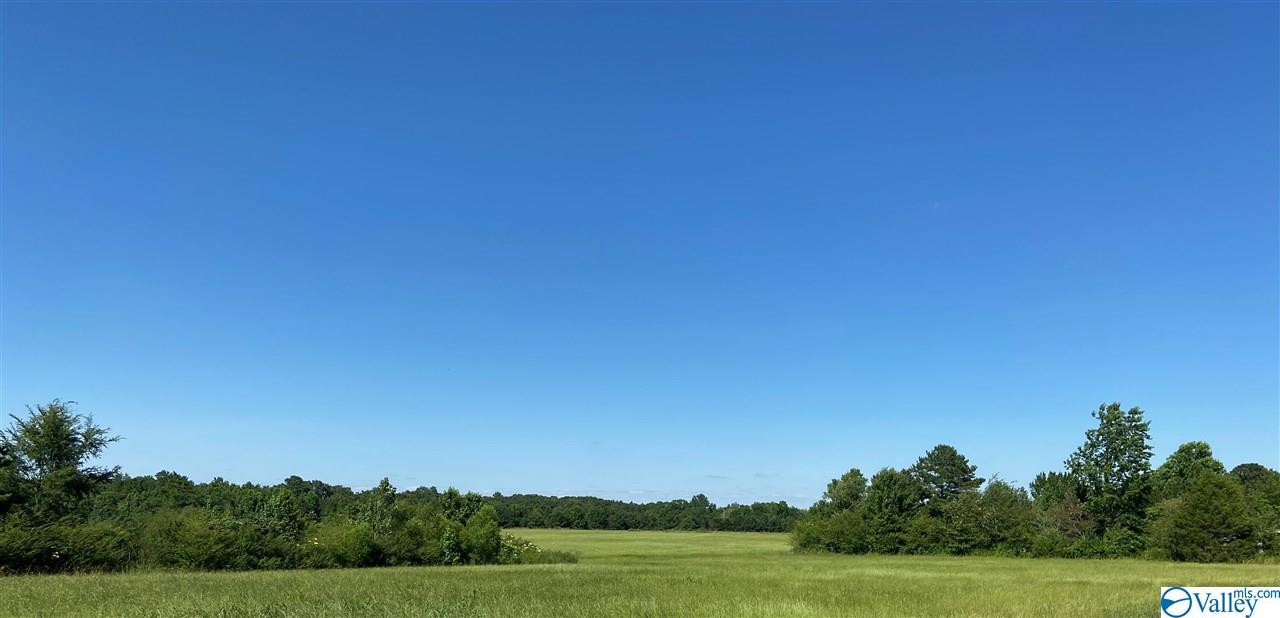 Photo of home for sale at LOT 3 AND 4 Johnson Road, Danville AL