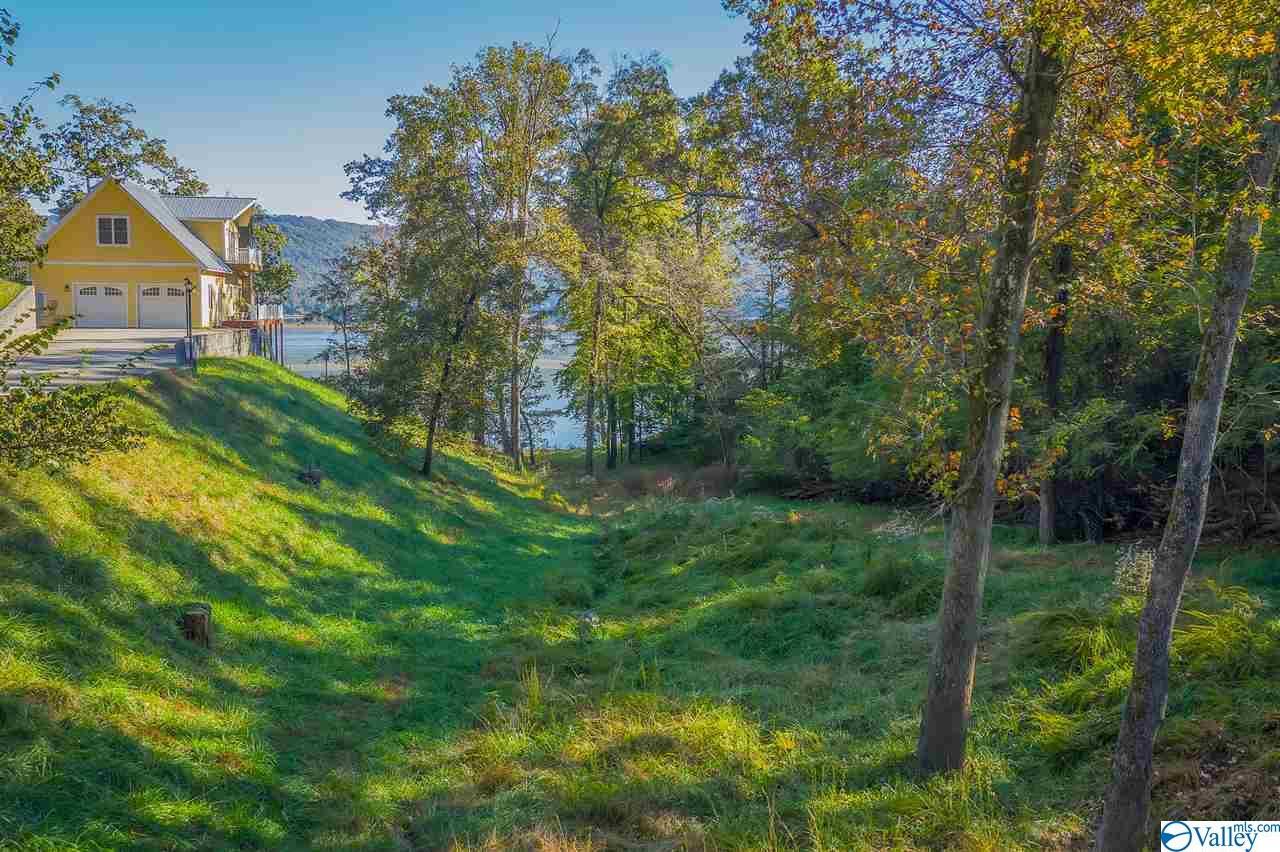 Photo of home for sale at 68 Monte Sano Drive, Scottsboro AL