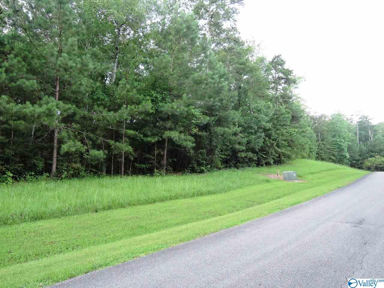 Photo of home for sale at 0 Stoney Point Drive, Double Springs AL