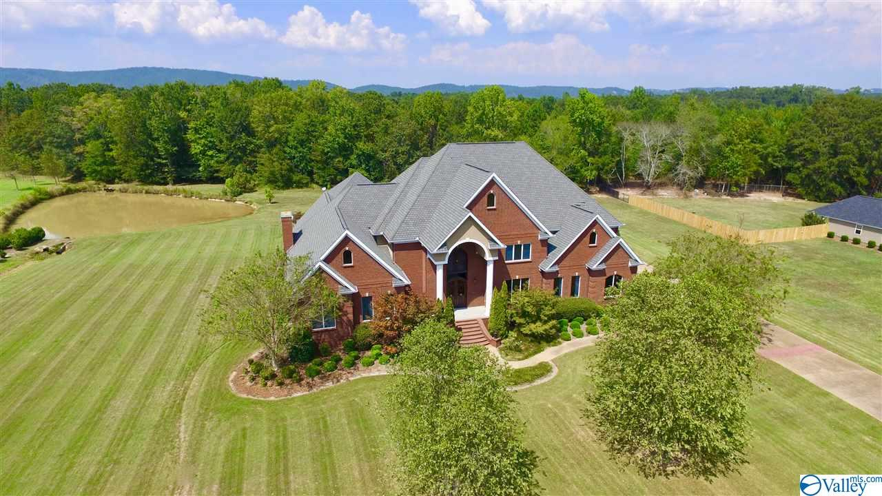 Photo of home for sale at 4380 Skyview Drive, Southside AL