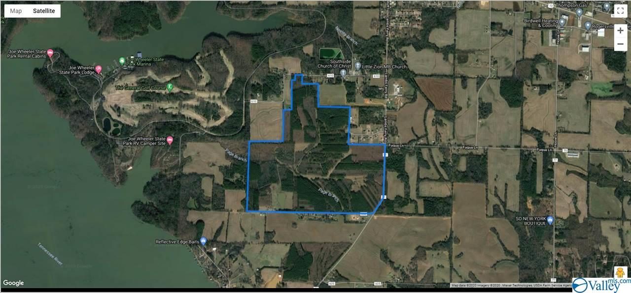 Photo of home for sale at 0 Lambs Ferry Road, Rogersville AL