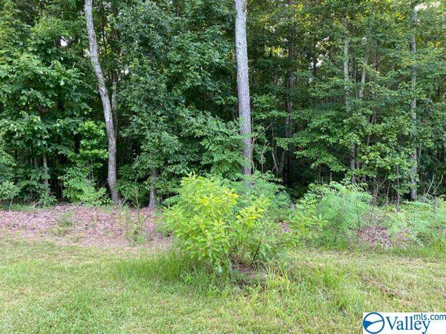 Photo of home for sale at 0 Sweetwater Lane, Rainbow City AL