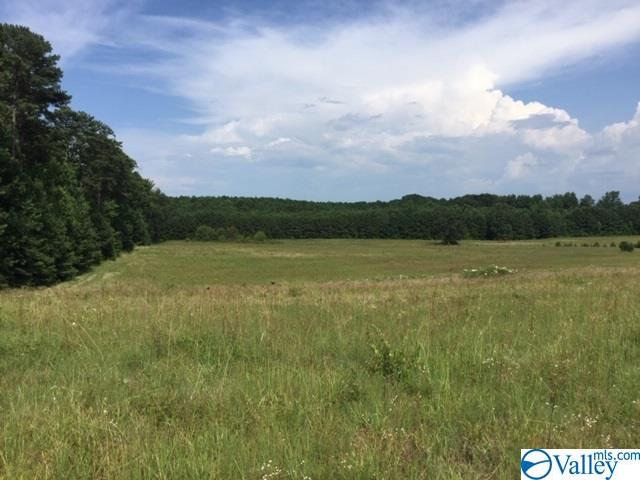 Photo of home for sale at 0000 Hwy 67, Priceville AL
