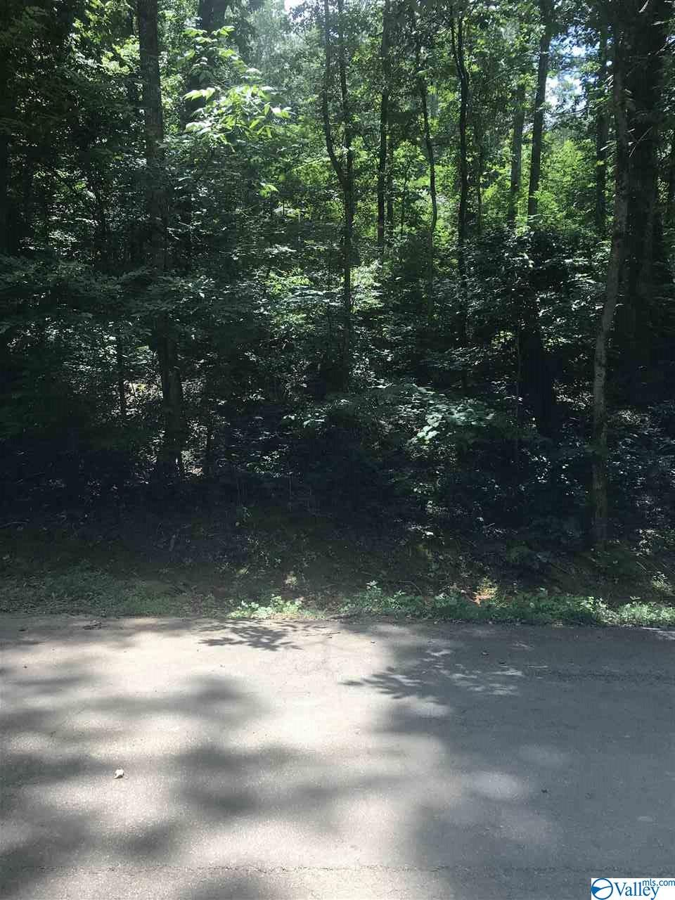 Photo of home for sale at LOT 32 Chambers Road, Arab AL