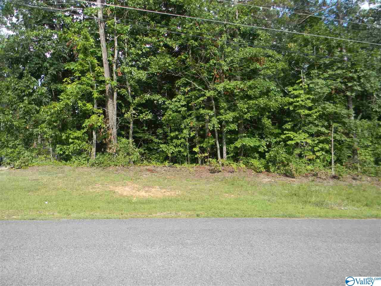 Photo of home for sale at 0 Vista Trail, Southside AL