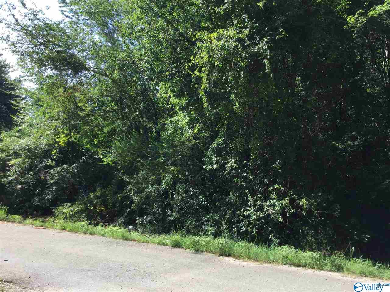 Photo of home for sale at 0000 Beaver Run Drive, Toney AL