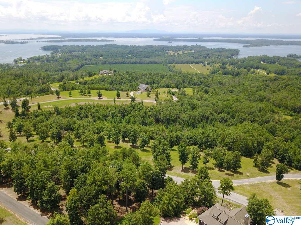 Photo of home for sale at Lot 228 County Road 767, Cedar Bluff AL