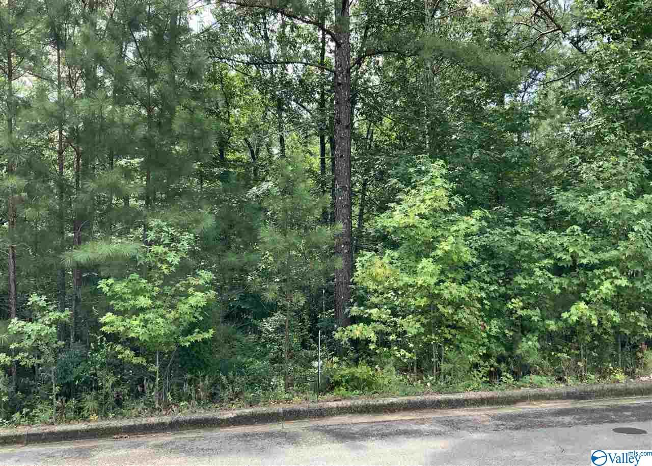 Photo of home for sale at Lot 33 Cade Circle, Leesburg AL