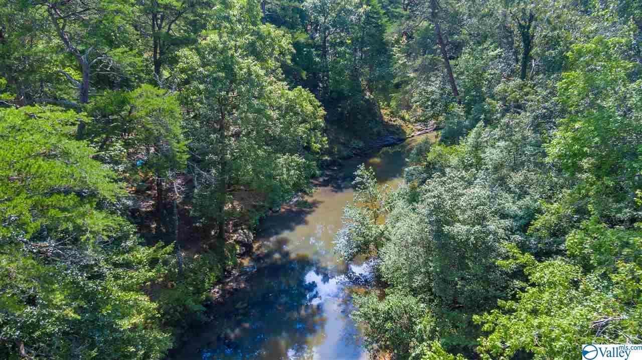 Photo of home for sale at 49 Road 9006, Mentone AL
