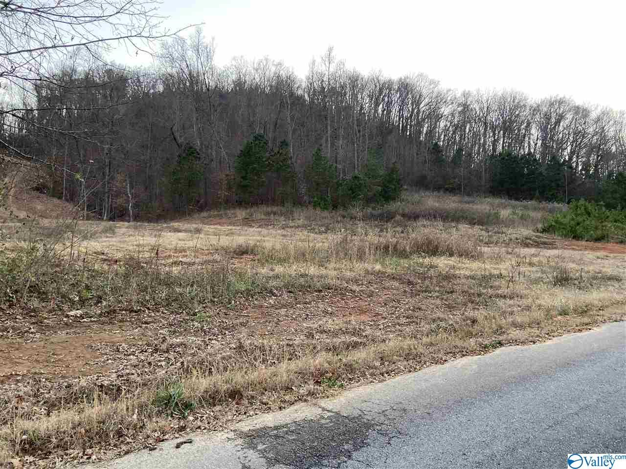 Photo of home for sale at Lot 1 Rocky Branch Road, Guntersville AL