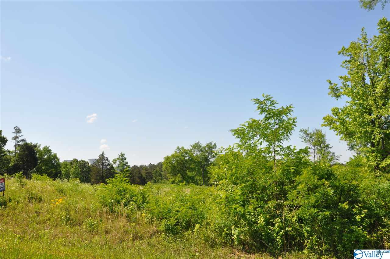 Photo of home for sale at 00 Ryan Road, Hollywood AL