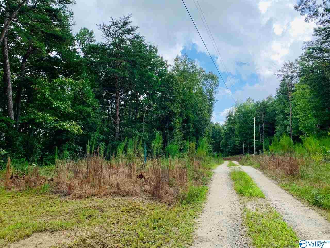 Photo of home for sale at lot 6 County Road 871, Gaylesville AL