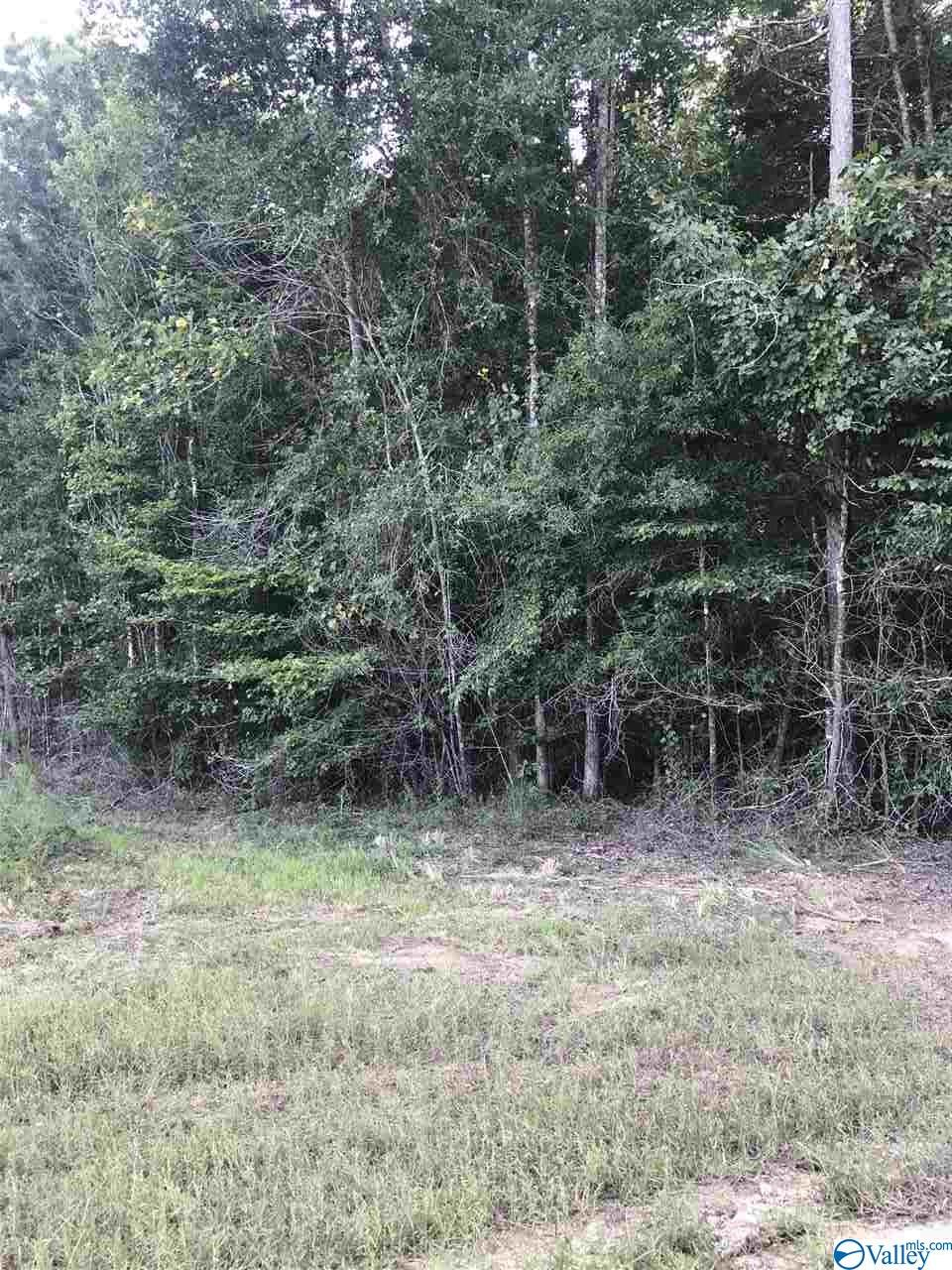 Photo of home for sale at lot 28 County Road 279, Moulton AL