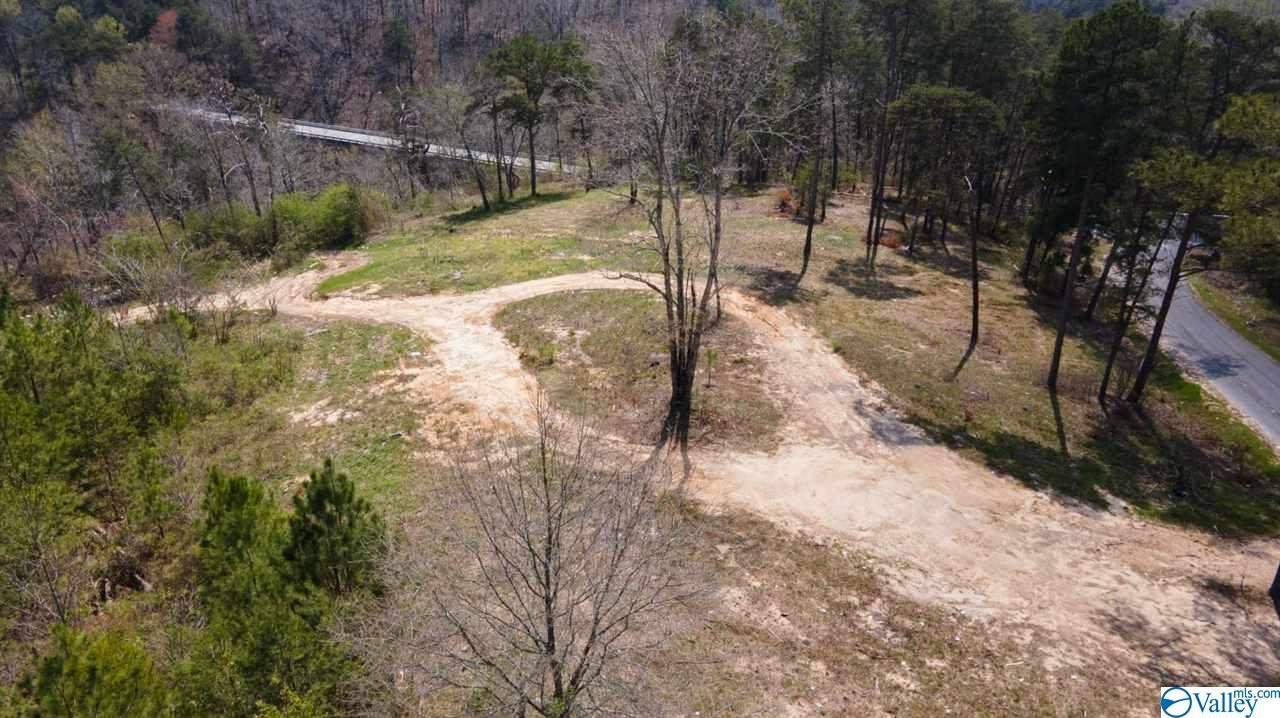 Photo of home for sale at 00 County Road 52, Section AL