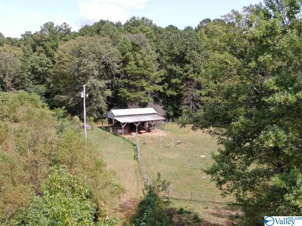 Photo of home for sale at 623 County Road 798, Valley Head AL