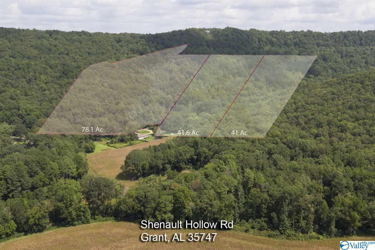 Photo of home for sale at 0 Shinault Hollow Road, Grant AL