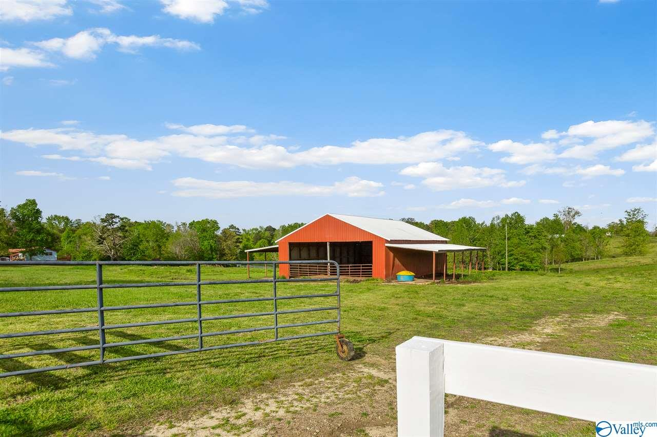 Photo of home for sale at 0 County Road 730, Henager AL