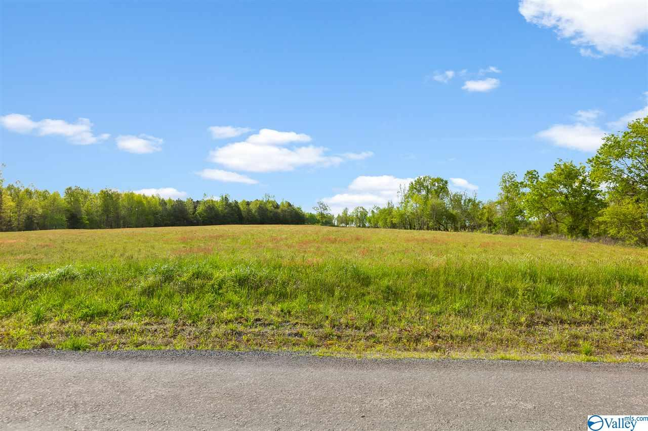 Photo of home for sale at 0 County Road 241, Henagar AL