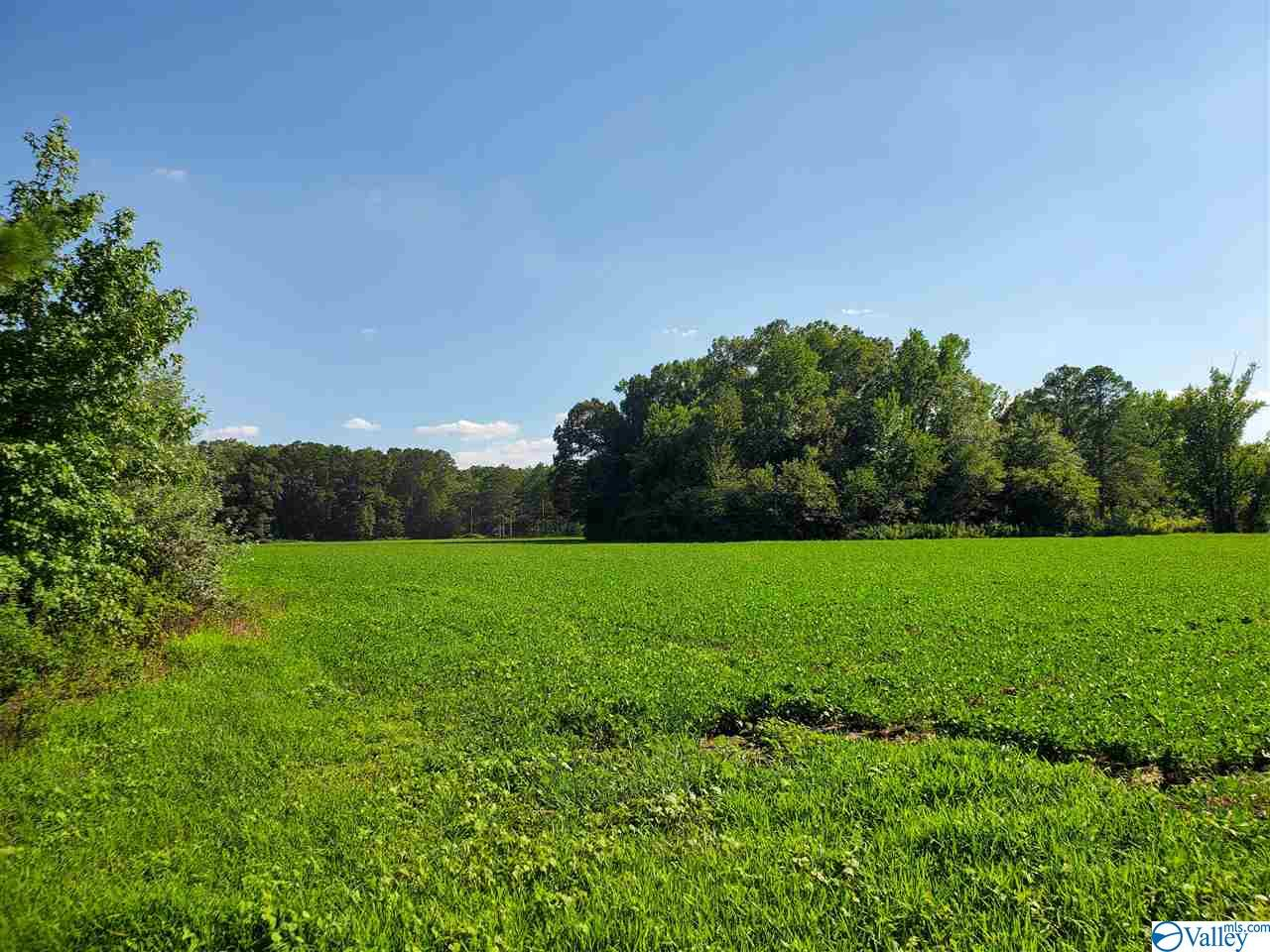 Photo of home for sale at 0 Ed Spears Road, Owens Cross Roads AL