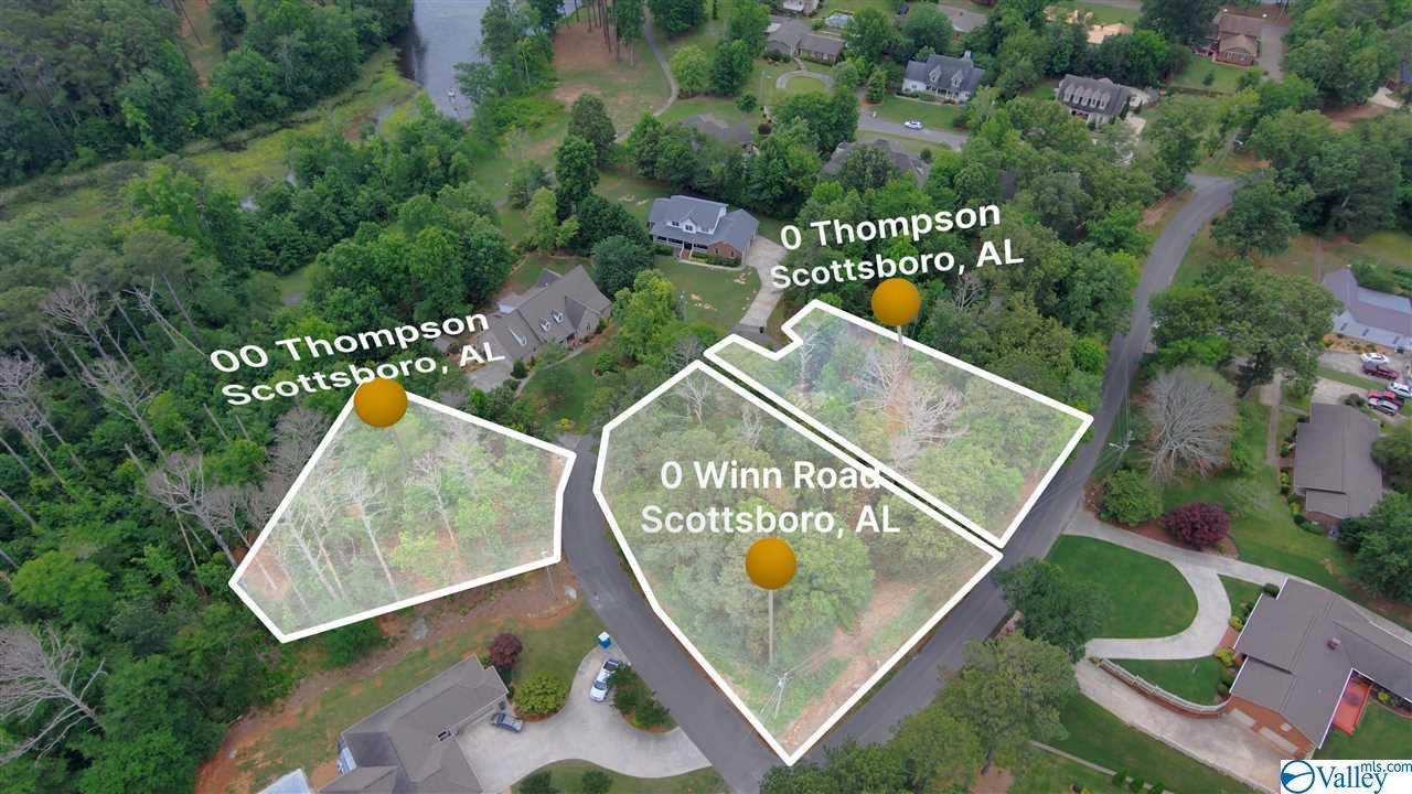 Photo of home for sale at 0 Thompson Drive, Scottsboro AL