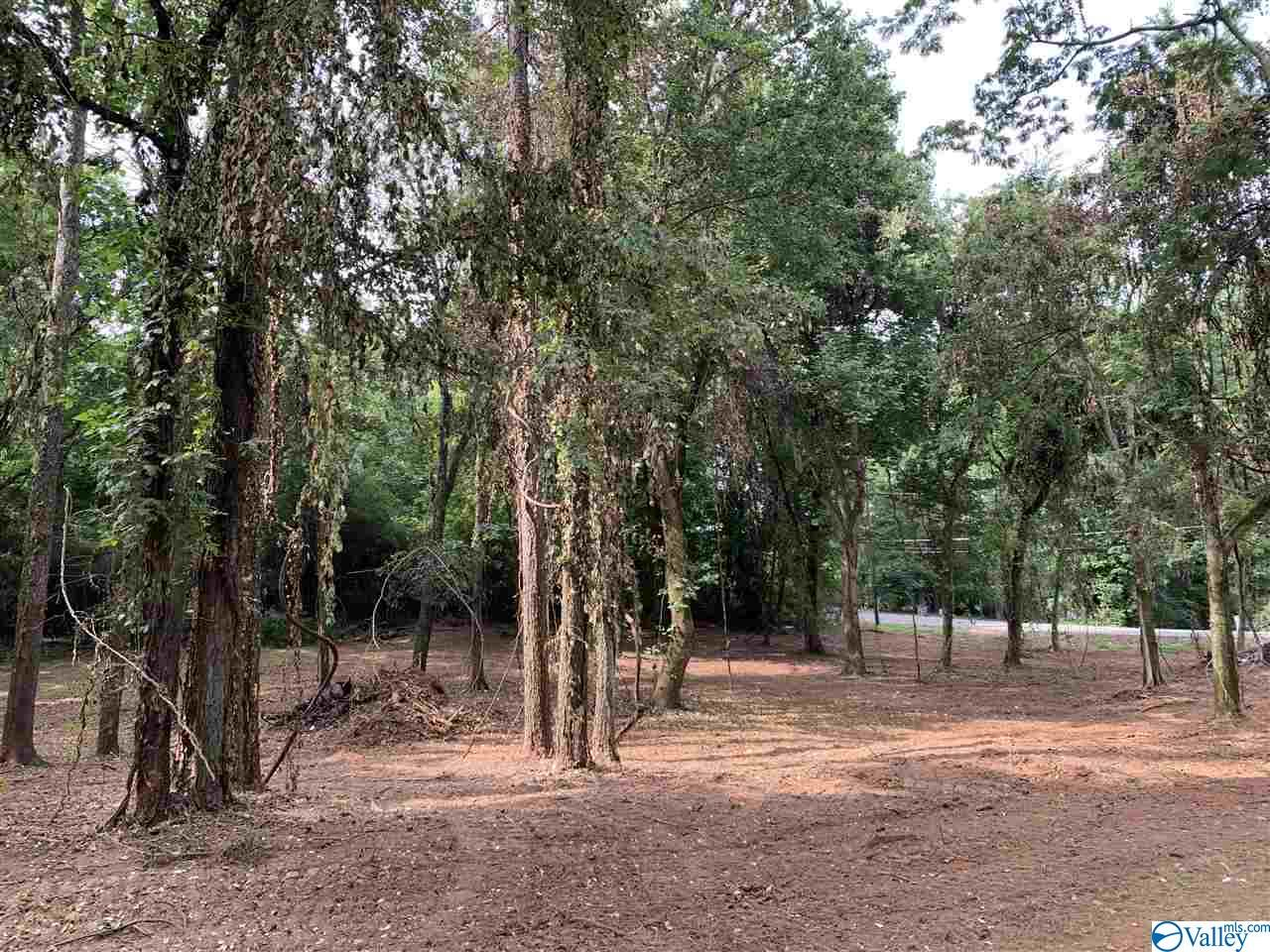 Photo of home for sale at 3858 County Road 91, Rogersville AL