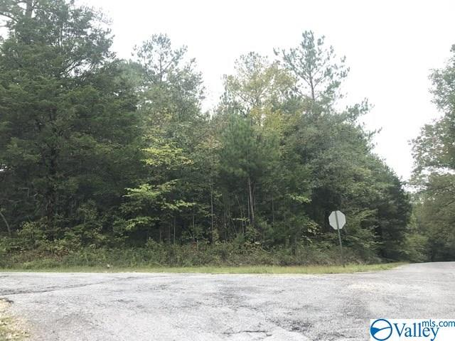 Photo of home for sale at lot 59 Tanglewood Trail, Hokes Bluff AL