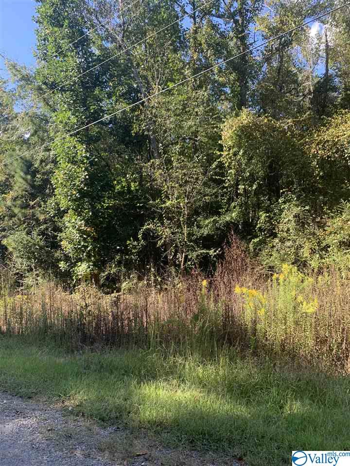 Photo of home for sale at 00 County Road 156, Bremen AL