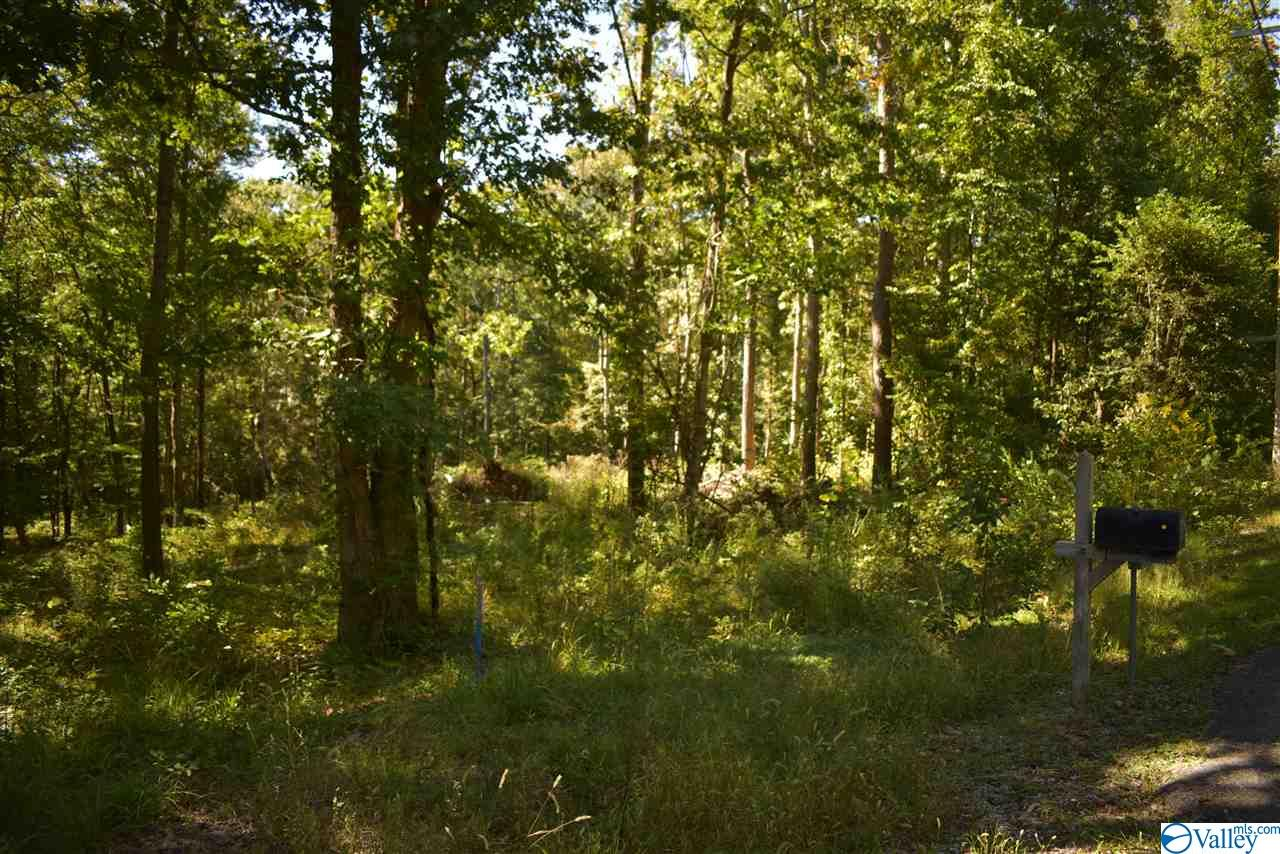 Photo of home for sale at 0000 West Chapel Hill Road, Decatur AL