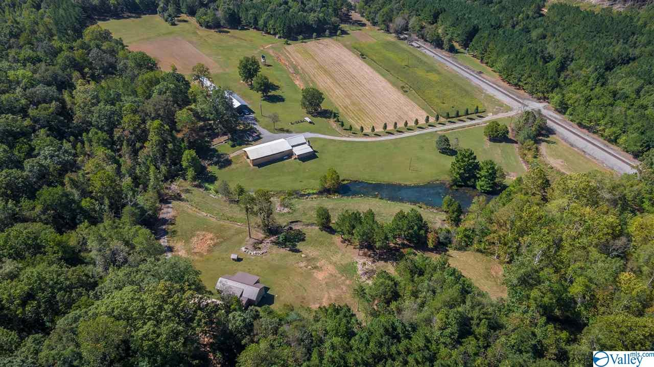Photo of home for sale at 1952 County Road 759, Valley Head AL