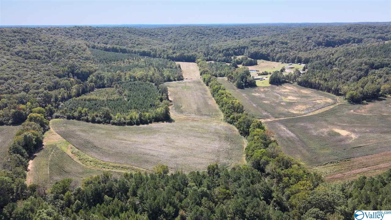 Photo of home for sale at 0 County Road 17, Mount Hope AL
