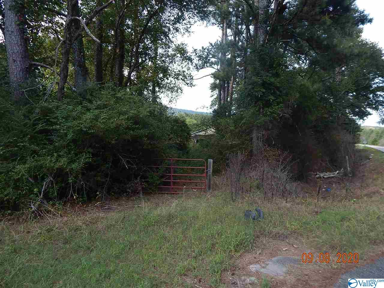 Photo of home for sale at 9085 Highway 273, Cedar Bluff AL