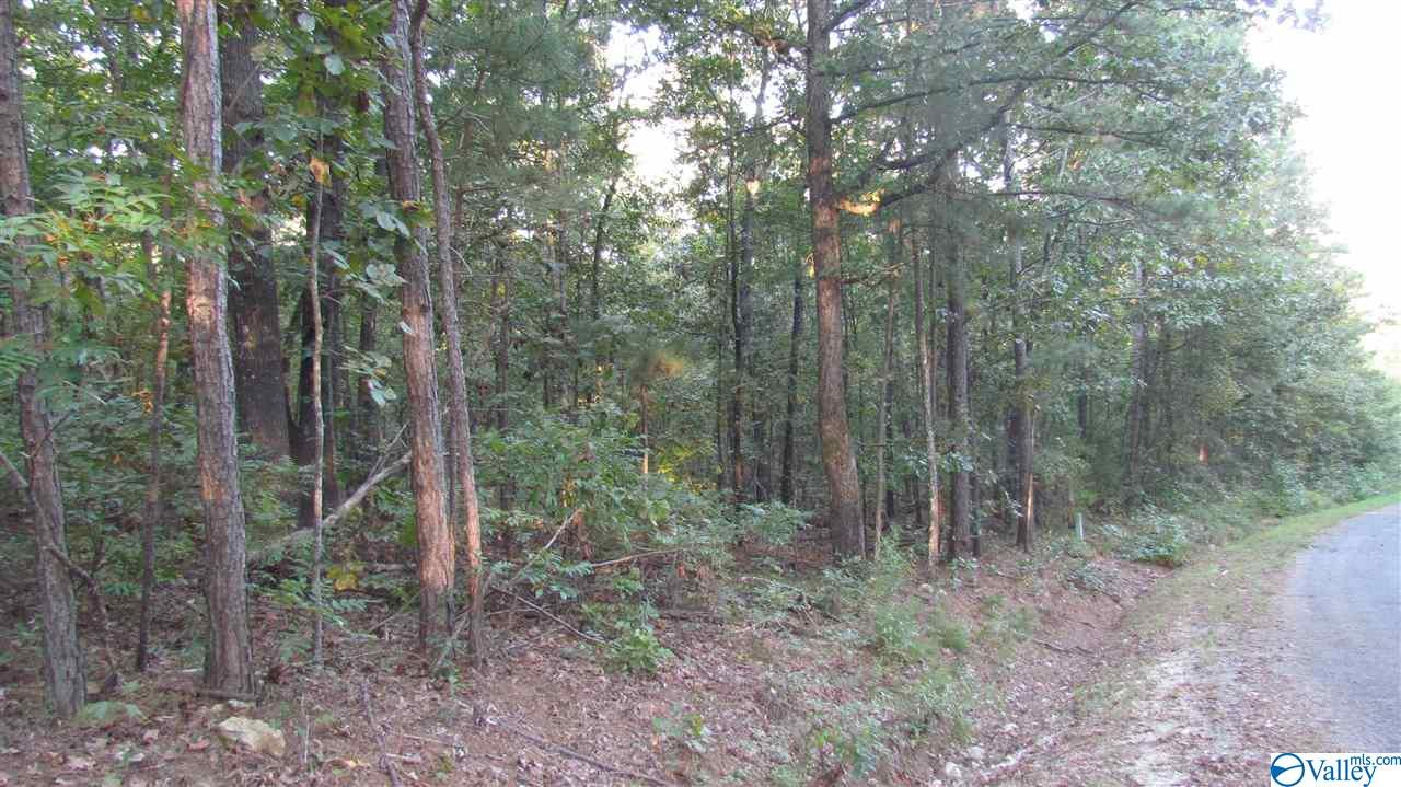 Photo of home for sale at 00 County Road 688, Cedar Bluff AL