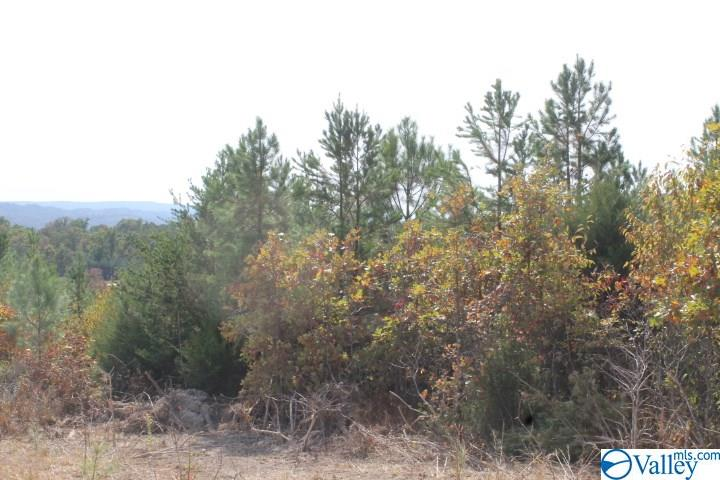 Photo of home for sale at Lot 16 North Hillside Drive, Fort Payne AL