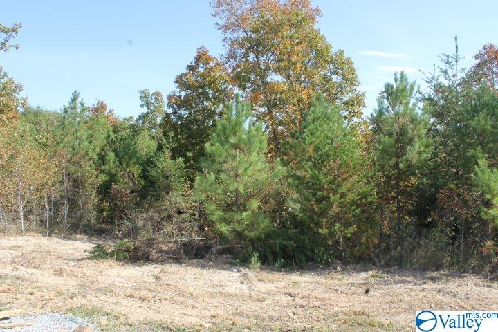 Photo of home for sale at Lot 11 Hillside Drive, Fort Payne AL