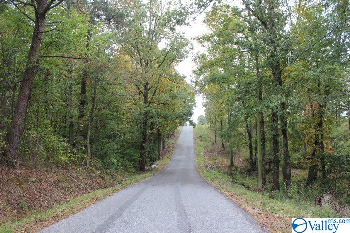 Photo of home for sale at Carter St, Rainsville AL