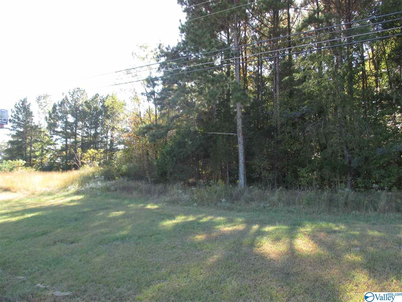 Photo of home for sale at 6020 US Highway 431, Brownsboro AL