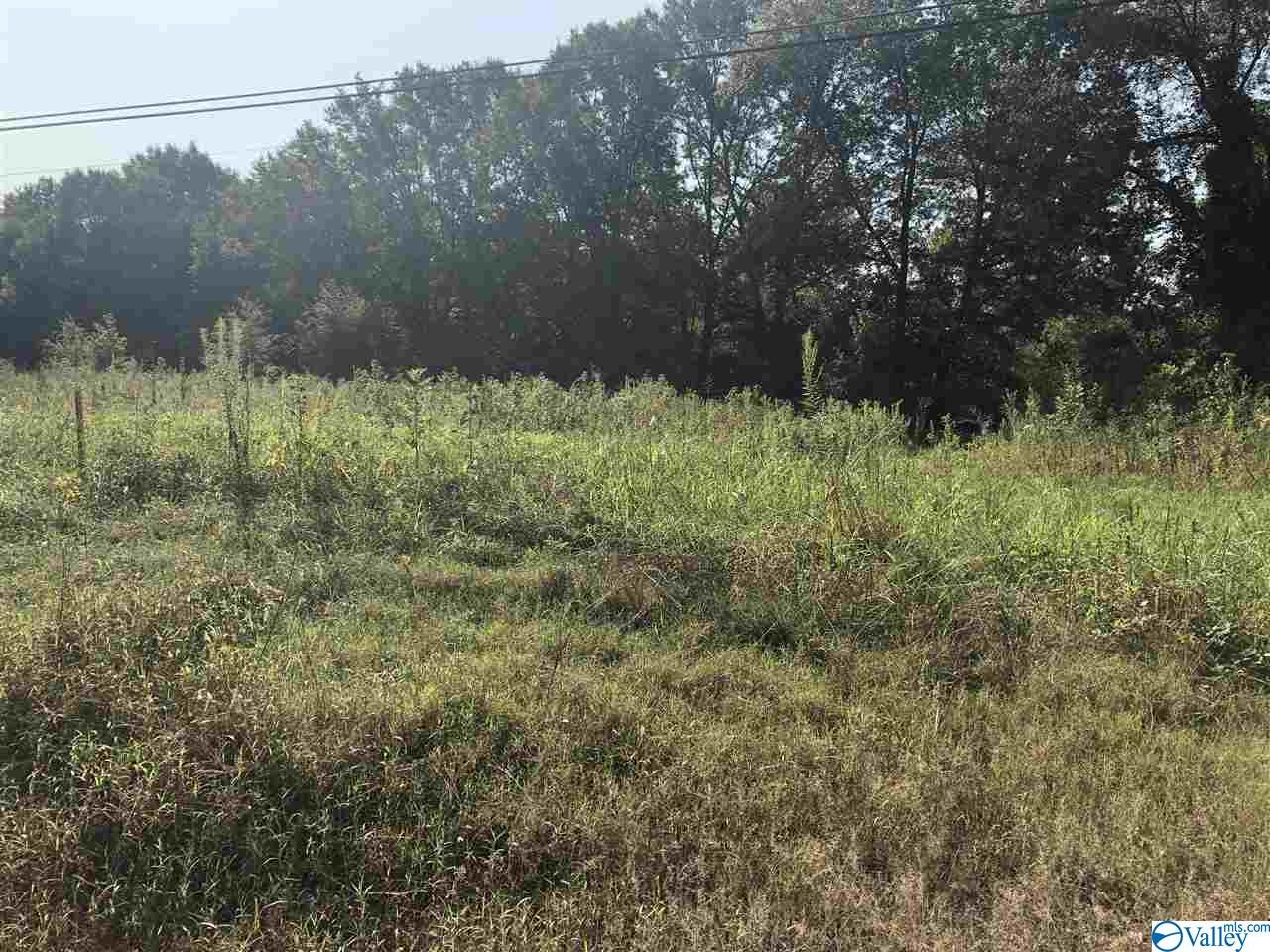 Photo of home for sale at 8131 County Road 221, Trinity AL