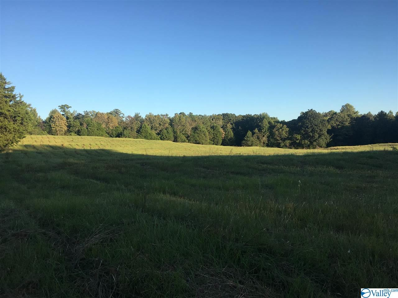 Photo of home for sale at 0 Natural Bridge Road, Hartselle AL