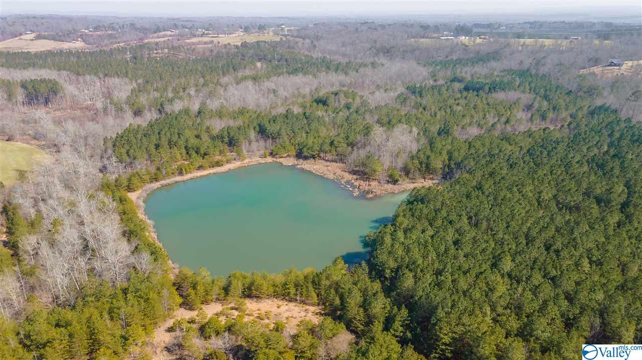 Photo of home for sale at 000 County Road 174, Flat Rock AL